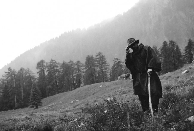 Documentally Shepherd BW